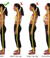 Is Poor Posture is contributing to your Muscle & Joint problems.